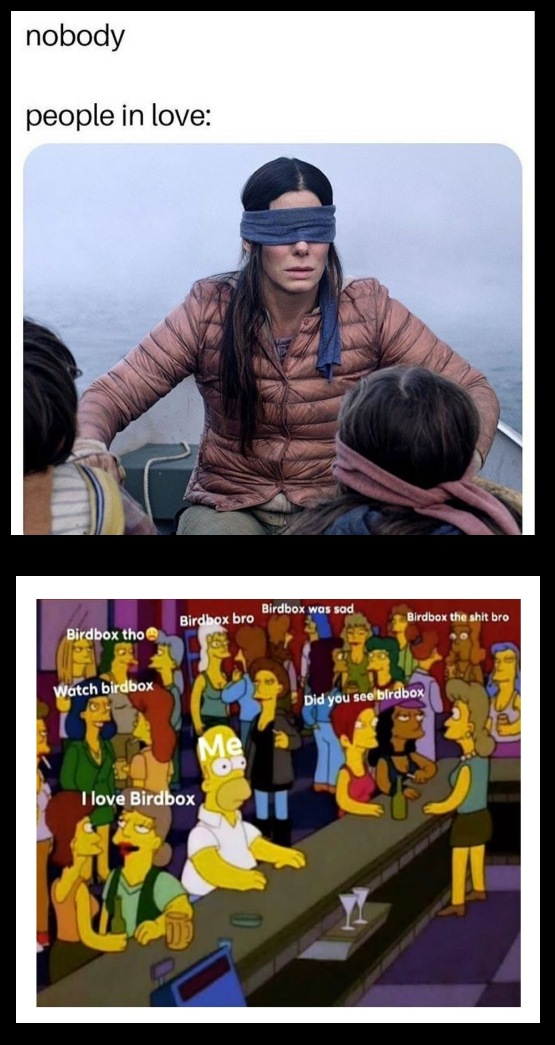 Memes on Bird Box using meme marketing for film marketing